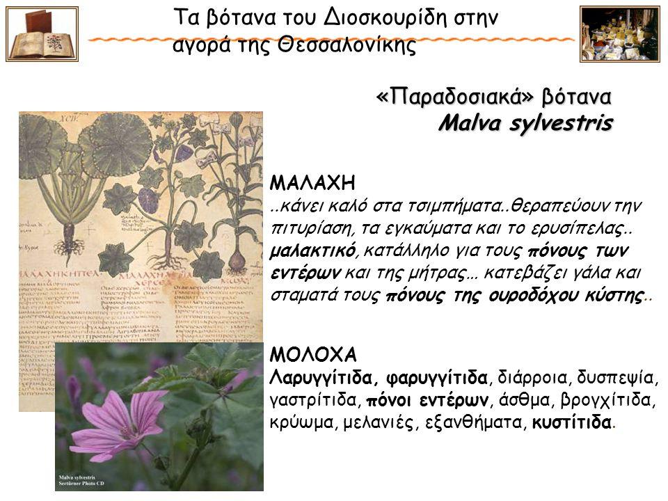 «Παραδοσιακά» βότανα Malva sylvestris «Παραδοσιακά» βότανα Malva sylvestris Τα βότανα του Διοσκουρίδη στην αγορά της Θεσσαλονίκης ΜΟΛΟΧΑ Λαρυγγίτιδα, φαρυγγίτιδα, διάρροια, δυσπεψία, γαστρίτιδα, πόνοι εντέρων, άσθμα, βρογχίτιδα, κρύωμα, μελανιές, εξανθήματα, κυστίτιδα.