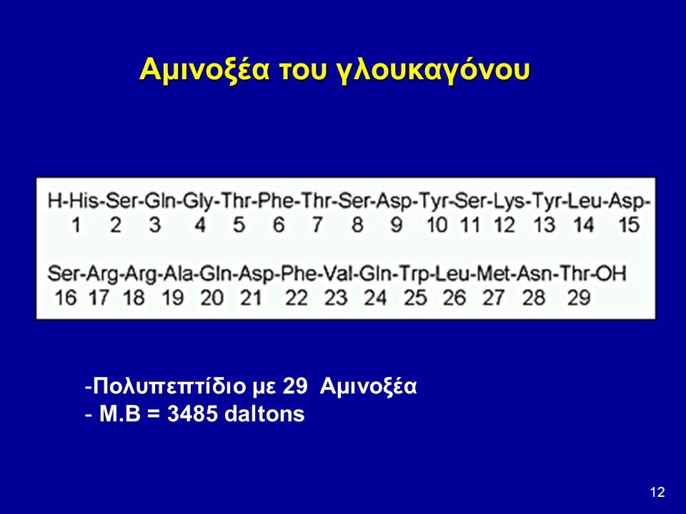 12 Αμινοξέα του γλουκαγόνου -Πολυπεπτίδιο με 29 Αμινοξέα - Μ.Β = 3485 daltons