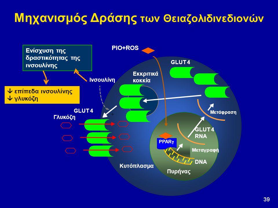 39 Μηχανισμός Δράσης των Θειαζολιδινεδιονών PIO+ROS DNA Πυρήνας GLUT 4 RNA GLUT 4 Ινσουλίνη Γλυκόζη Εκκριτικά κοκκία Μεταγραφή Μετάφραση PPAR  Κυτόπλ