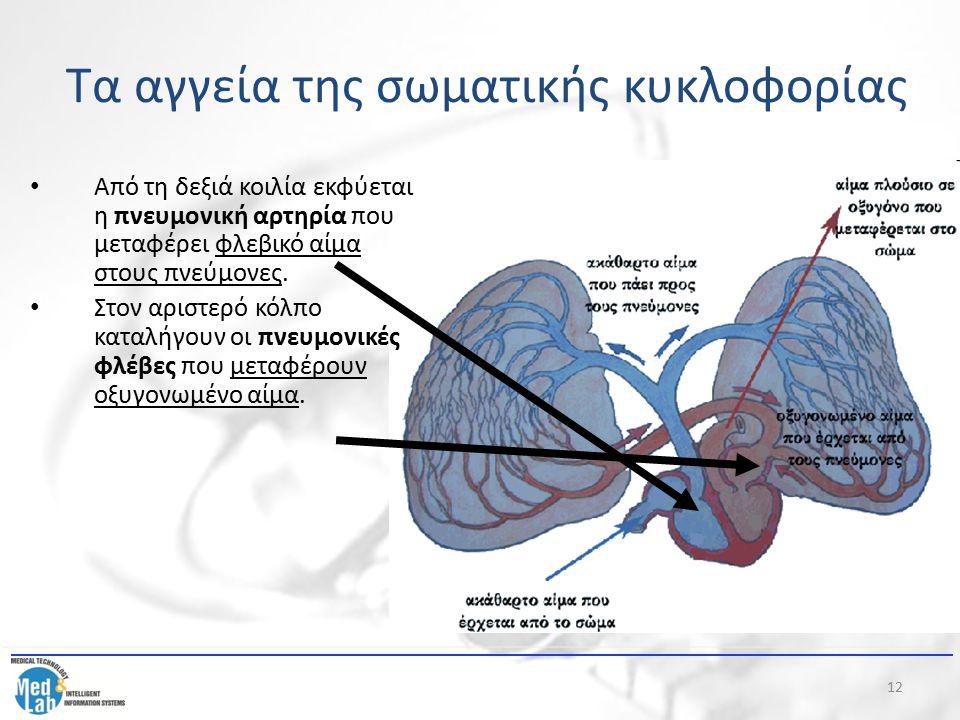 12 Από τη δεξιά κοιλία εκφύεται η πνευμονική αρτηρία που μεταφέρει φλεβικό αίμα στους πνεύμονες. Στον αριστερό κόλπο καταλήγουν οι πνευμονικές φλέβες