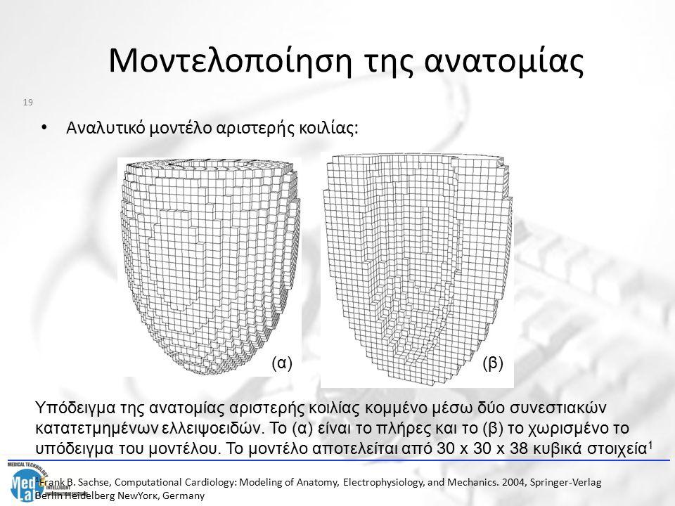 Μοντελοποίηση της ανατομίας Αναλυτικό μοντέλο αριστερής κοιλίας: (α)(β) Υπόδειγμα της ανατομίας αριστερής κοιλίας κομμένο μέσω δύο συνεστιακών κατατετ