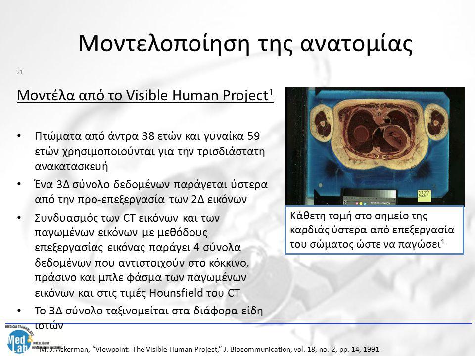 Μοντελοποίηση της ανατομίας Μοντέλα από το Visible Human Project 1 Πτώματα από άντρα 38 ετών και γυναίκα 59 ετών χρησιμοποιούνται για την τρισδιάστατη