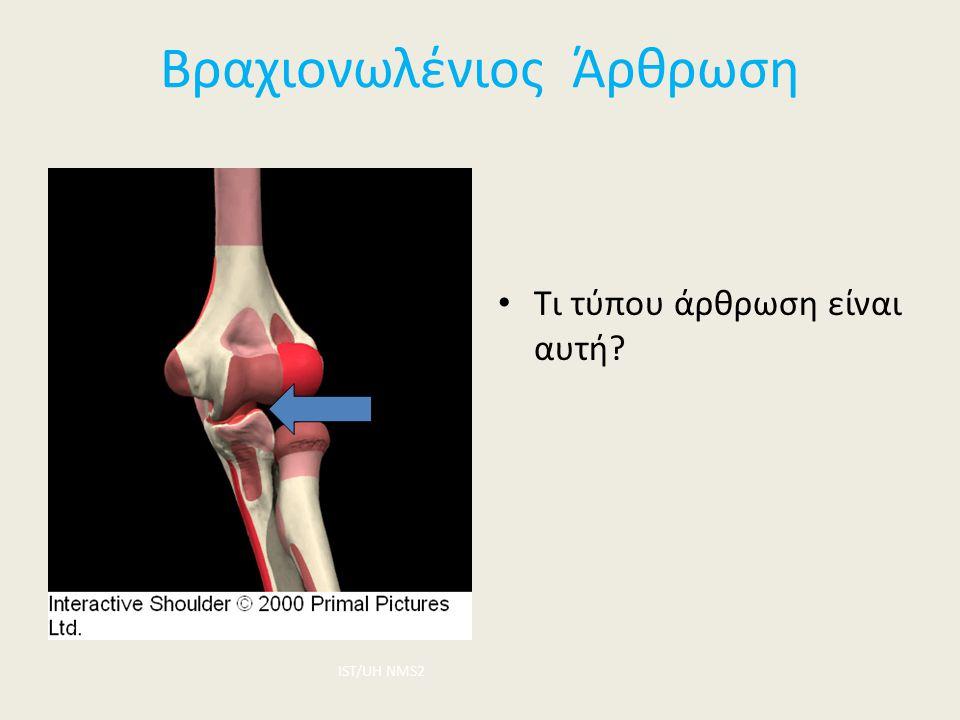 Βραχιονωλένιος Άρθρωση Τι τύπου άρθρωση είναι αυτή? ΙST/UH NMS2