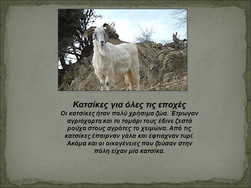 Κατσίκες για όλες τις εποχές Οι κατσίκες ήταν πολύ χρήσιμα ζώα. Έτρωγαν αγριόχορτα και το τομάρι τους έδινε ζεστά ρούχα στους αγρότες το χειμώνα. Από