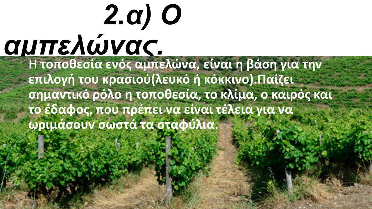 1.Εισαγωγή Πριν από πολλά χρόνια στην αρχαία Αιτωλία, ένας τσοπάνης, ο Στάφυλος, ανακάλυψε ένα περίεργο φυτό γεμάτο καρπούς. Ενθουσιασμένος ο Στάφυλος