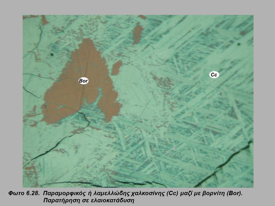 Φωτο 6.28. Παραμορφικός ή λαμελλώδης χαλκοσίνης (Cc) μαζί με βορνίτη (Bor). Παρατήρηση σε ελαιοκατάδυση