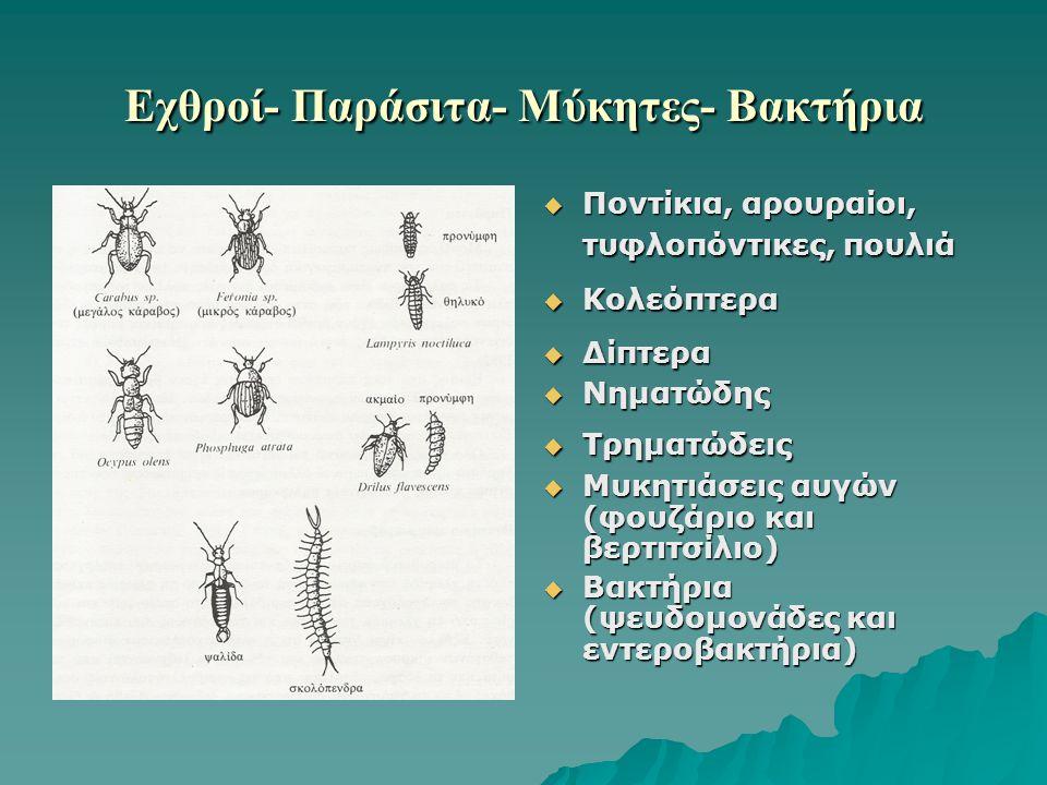Εχθροί- Παράσιτα- Μύκητες- Βακτήρια  Ποντίκια, αρουραίοι, τυφλοπόντικες, πουλιά  Κολεόπτερα  Δίπτερα  Νηματώδης  Τρηματώδεις  Μυκητιάσεις αυγών