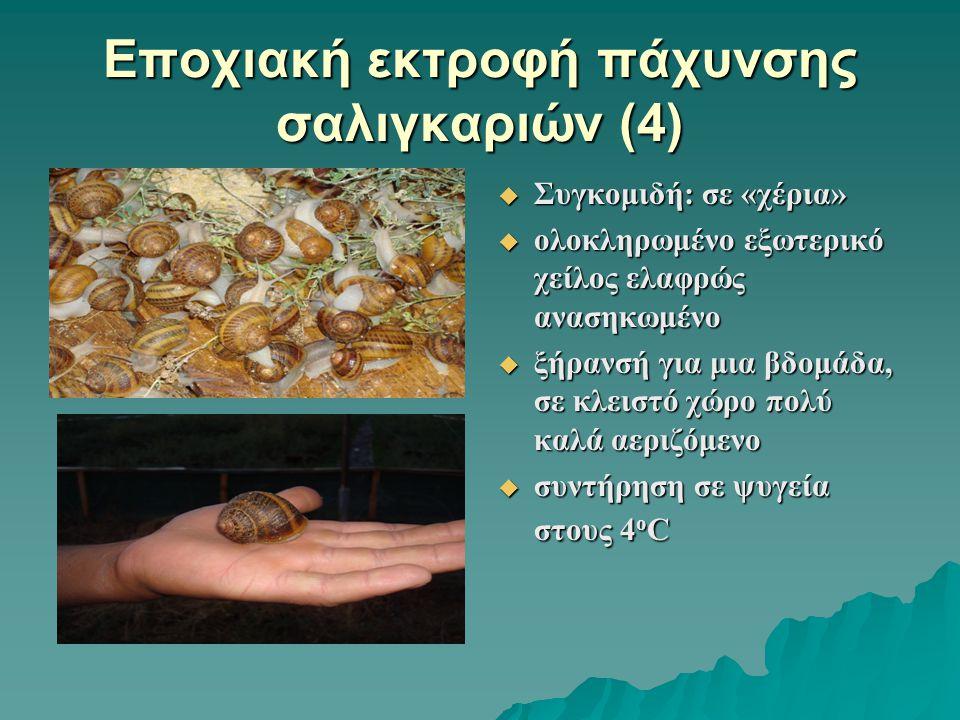 Εποχιακή εκτροφή πάχυνσης σαλιγκαριών (4)  Συγκομιδή: σε «χέρια»  ολοκληρωμένο εξωτερικό χείλος ελαφρώς ανασηκωμένο  ξήρανσή για μια βδομάδα, σε κλ