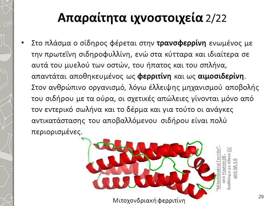 Απαραίτητα ιχνοστοιχεία 2/22 Στο πλάσμα ο σίδηρος φέρεται στην τρανσφερρίνη ενωμένος με την πρωτεΐνη σιδηροφυλλίνη, ενώ στα κύτταρα και ιδιαίτερα σε