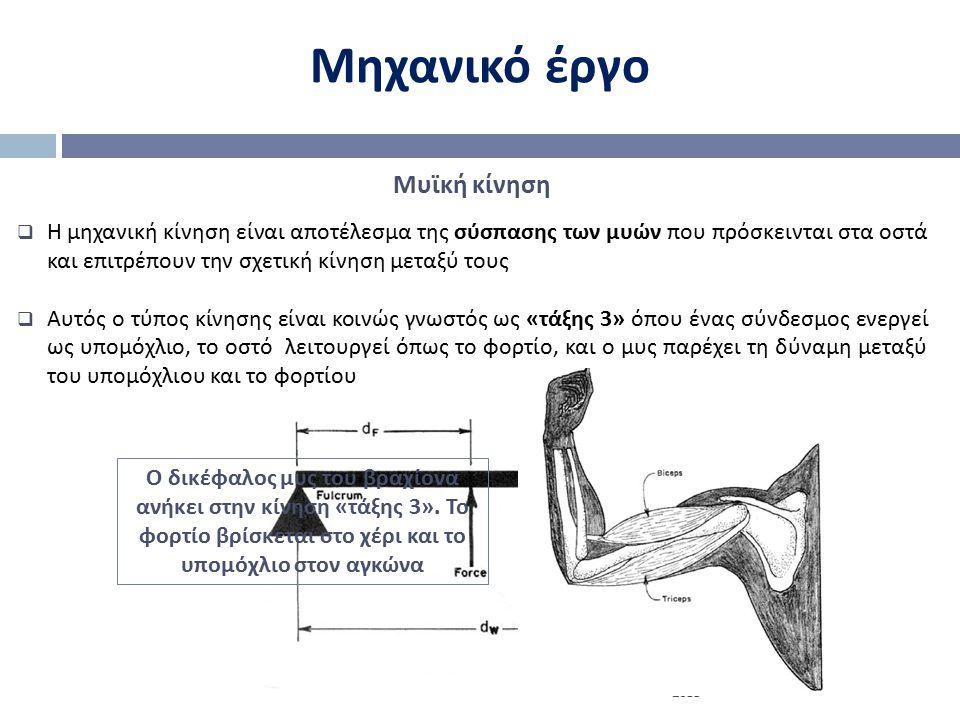 Μηχανικό έργο Mυϊκή κίνηση  Η μηχανική κίνηση είναι αποτέλεσμα της σύσπασης των μυών που πρόσκεινται στα οστά και επιτρέπουν την σχετική κίνηση μεταξ