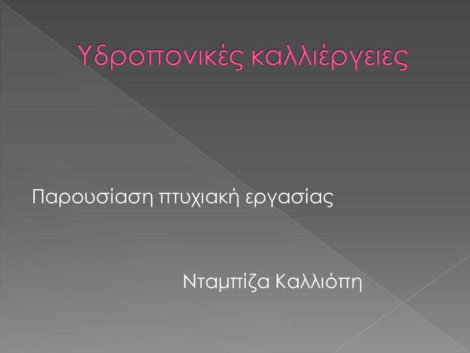 Παρουσίαση πτυχιακή εργασίας Νταμπίζα Καλλιόπη