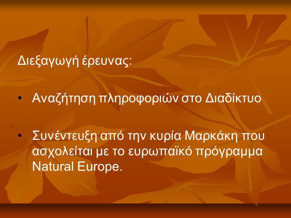 Διεξαγωγή έρευνας: Αναζήτηση πληροφοριών στο Διαδίκτυο Συνέντευξη από την κυρία Μαρκάκη που ασχολείται με το ευρωπαϊκό πρόγραμμα Natural Europe.