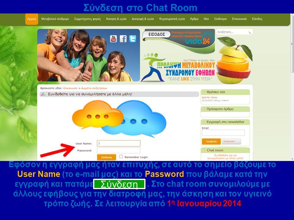 Σύνδεση στο Chat Room Εφόσον η εγγραφή μας ήταν επιτυχής, σε αυτό το σημείο βάζουμε το User Name (το e-mail μας) και το Password που βάλαμε κατά την ε