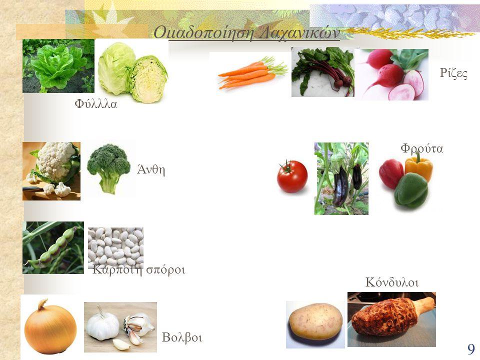 9 Ομαδοποίηση Λαχανικών Φύλλλα Άνθη Καρποί η σπόροι Βολβοι Κόνδυλοι Φρούτα Ρίζες