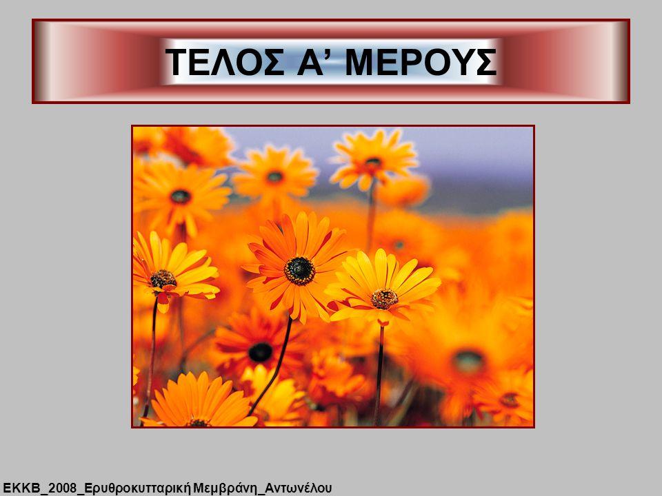 ΤΕΛΟΣ Α' ΜΕΡΟΥΣ ΕΚΚΒ_2008_Ερυθροκυτταρική Μεμβράνη_Αντωνέλου