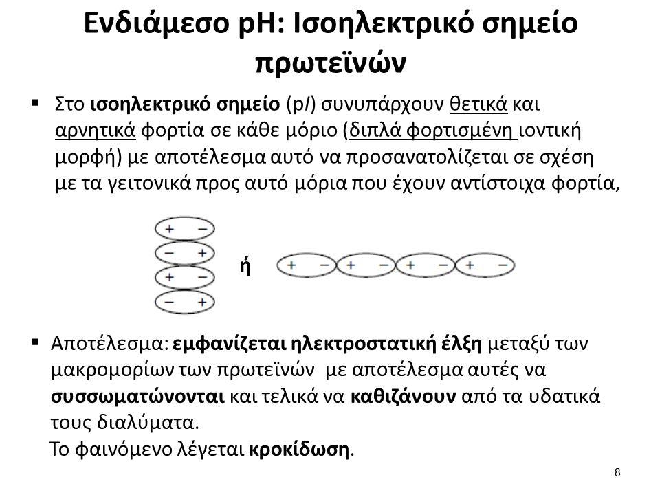 Ενδιάμεσο pH: Ισοηλεκτρικό σημείο πρωτεϊνών  Στο ισοηλεκτρικό σημείο (pI) συνυπάρχουν θετικά και αρνητικά φορτία σε κάθε μόριο (διπλά φορτισμένη ιοντική μορφή) με αποτέλεσμα αυτό να προσανατολίζεται σε σχέση με τα γειτονικά προς αυτό μόρια που έχουν αντίστοιχα φορτία, ή  Αποτέλεσμα: εμφανίζεται ηλεκτροστατική έλξη μεταξύ των μακρομορίων των πρωτεϊνών με αποτέλεσμα αυτές να συσσωματώνονται και τελικά να καθιζάνουν από τα υδατικά τους διαλύματα.