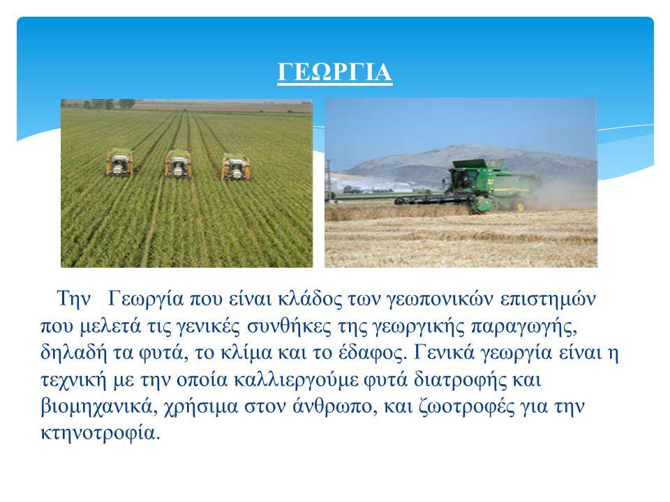Την Γεωργία που είναι κλάδος των γεωπονικών επιστημών που μελετά τις γενικές συνθήκες της γεωργικής παραγωγής, δηλαδή τα φυτά, το κλίμα και το έδαφος.
