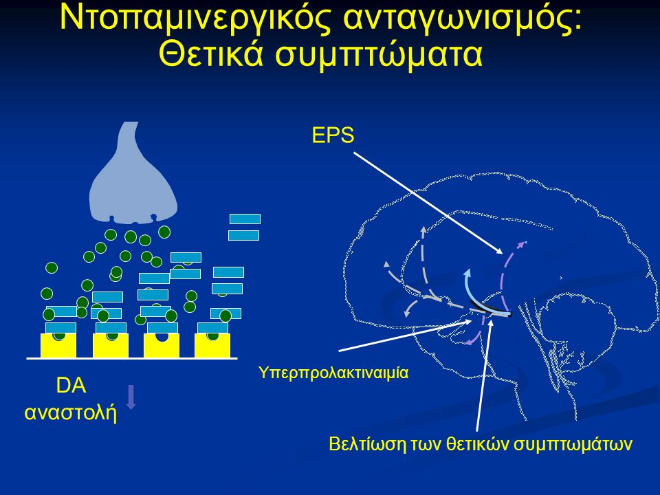 Ντοπαμινεργικός ανταγωνισμός: Θετικά συμπτώματα Βελτίωση των θετικών συμπτωμάτων EPS Υπερπρολακτιναιμία DA αναστολή