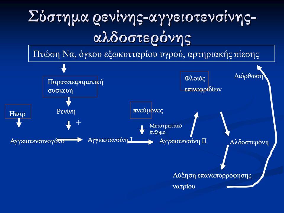 Σύστημα ρενίνης-αγγειοτενσίνης- αλδοστερόνης Πτώση Να, όγκου εξωκυτταρίου υγρού, αρτηριακής πίεσης Παρασπειραματική συσκευή Ρενίνη Ηπαρ Αγγειοτενσινογ