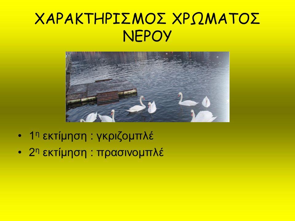ΜΕΤΡΗΣΗ ΔΙΑΦΑΝΕΙΑΣ ΝΕΡΟΥ (με τον δίσκο του secchi) Μέτρηση : βάθος διαφάνειας > 2,5 m