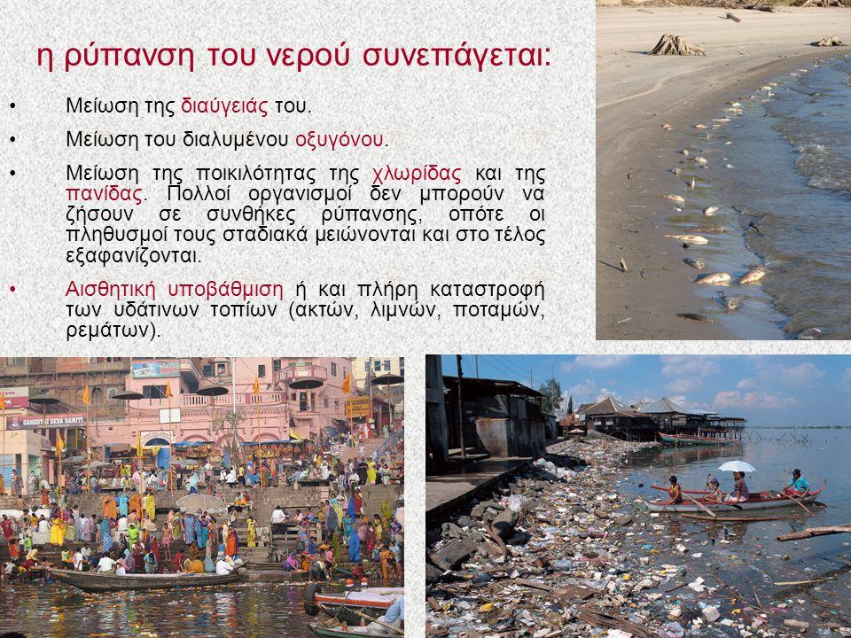η ρύπανση του νερού συνεπάγεται: Μείωση της διαύγειάς του. Μείωση του διαλυμένου οξυγόνου. Μείωση της ποικιλότητας της χλωρίδας και της πανίδας. Πολλο