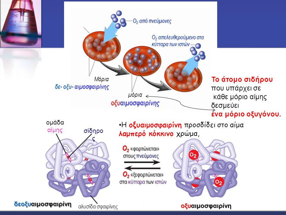 Μόρια δε- οξυ- αιμοσφαιρίνης δε- οξυ- αιμοσφαιρίνης Ο 2 από πνεύμονες Ο 2 απελευθερούμενο στα κύτταρα των ιστών οξυαιμοσφαιρίνης μόρια οξυαιμοσφαιρίνη