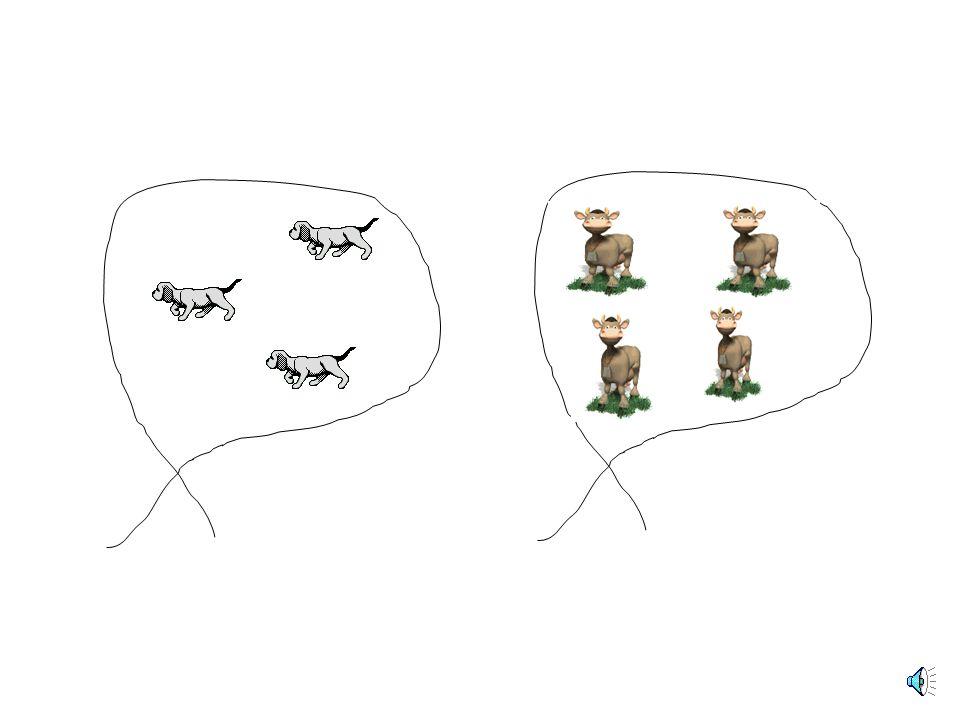 Πόσα ζώα υπάρχουν σε κάθε σχοινί;