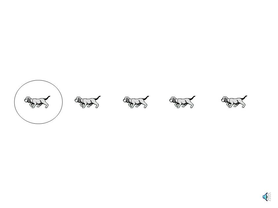 Να πεις ποιο ζώο κλείσαμε με τη σειρά του σε κύκλο.