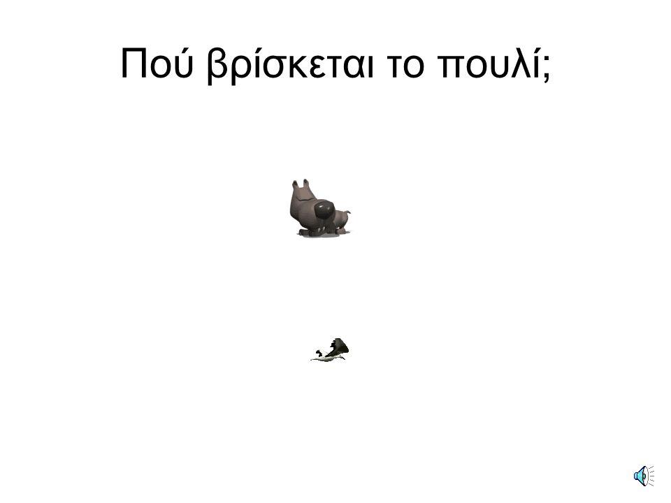 Το πουλί βρίσκεται πάνω από το σκύλο.