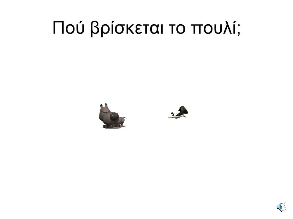 Το πουλί βρίσκεται κάτω από το σκύλο.