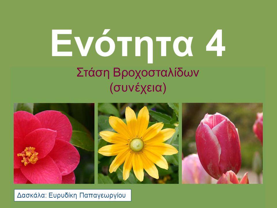 Στάση Βροχοσταλίδων Βιβλίο Μαθητή, Σελ.62, άσκ.