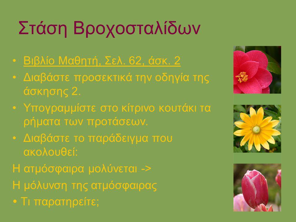 Στάση Βροχοσταλίδων Βιβλίο Μαθητή, Σελ. 62, άσκ. 2 Διαβάστε προσεκτικά την οδηγία της άσκησης 2. Υπογραμμίστε στο κίτρινο κουτάκι τα ρήματα των προτάσ