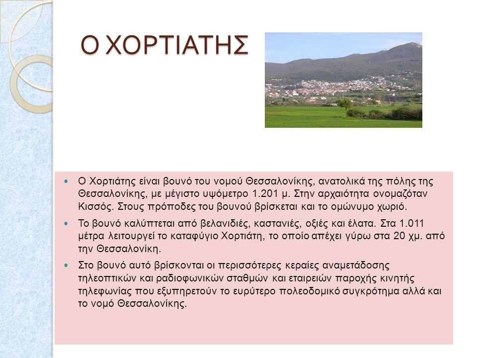 Ο ΤΑΥΓΕΤΟΣ Ο ΤΑΥΓΕΤΟΣ Η οροσειρά αυτή, από πολύ νωρίς συνδέθηκε με την αρχαία ελληνική μυθολογία και πήρε την ονομασία της από την Ταΰγετο, μία από τι