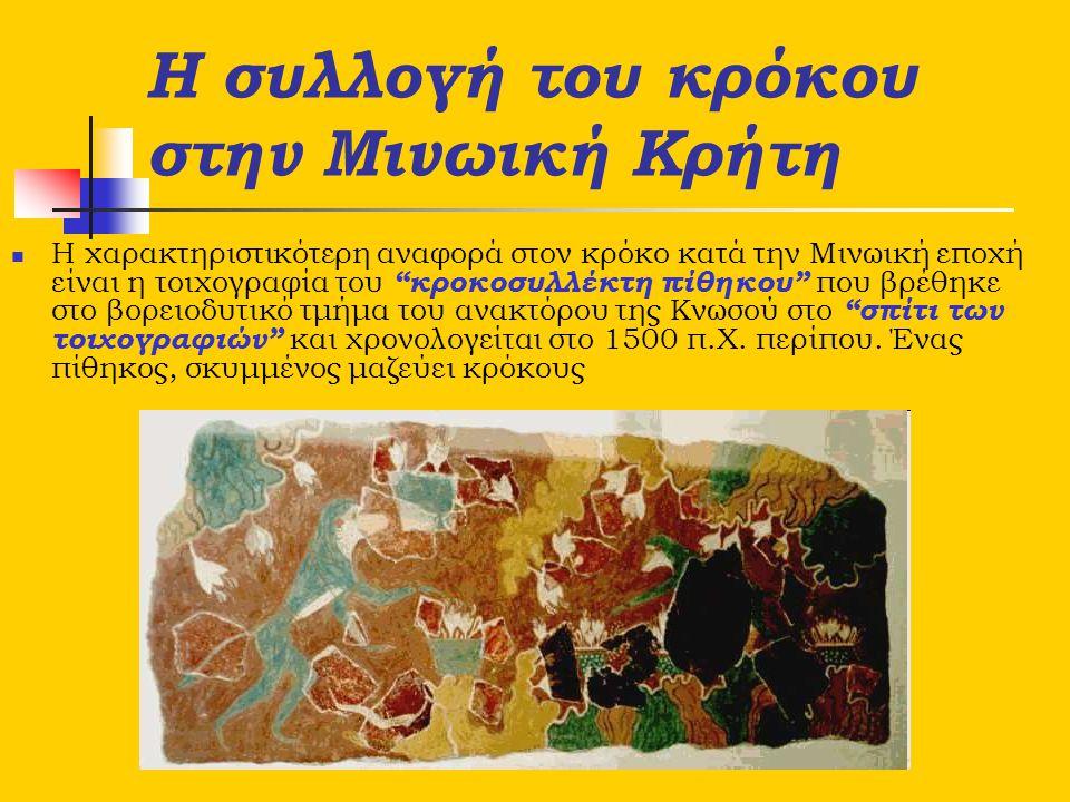 """Η συλλογή του κρόκου στην Μινωική Κρήτη Η χαρακτηριστικότερη αναφορά στον κρόκο κατά την Μινωική εποχή είναι η τοιχογραφία του """"κροκοσυλλέκτη πίθηκου"""""""