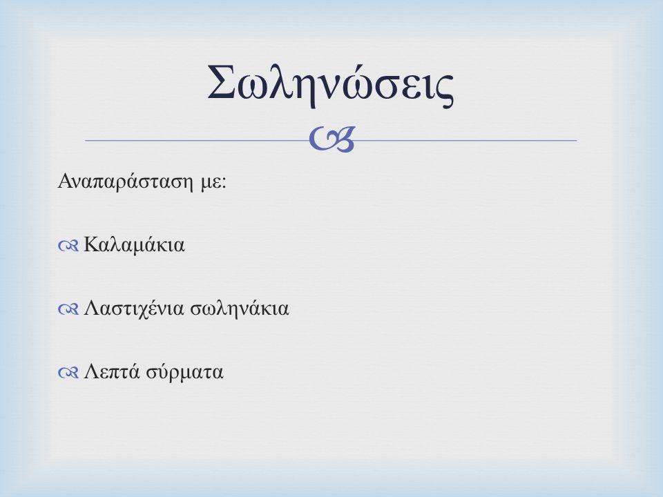  Αναπαράσταση με :  Καλαμάκια  Λαστιχένια σωληνάκια  Λεπτά σύρματα Σωληνώσεις