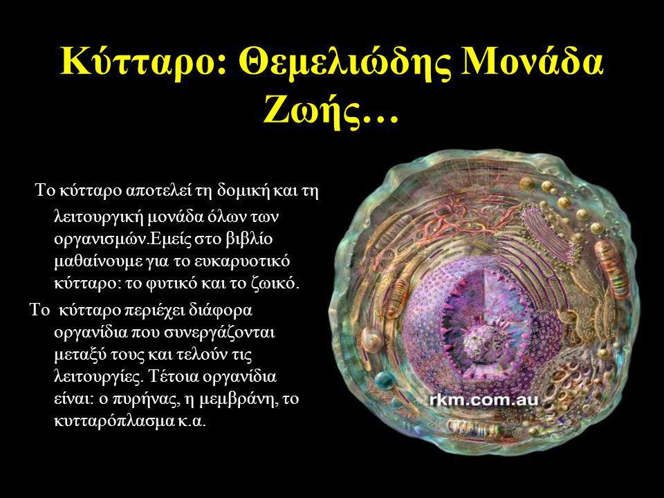 Κύτταρο: Θεμελιώδης Μονάδα Ζωής… Το κύτταρο αποτελεί τη δομική και τη λειτουργική μονάδα όλων των οργανισμών.Εμείς στο βιβλίο μαθαίνουμε για το ευκαρυοτικό κύτταρο: το φυτικό και το ζωικό.