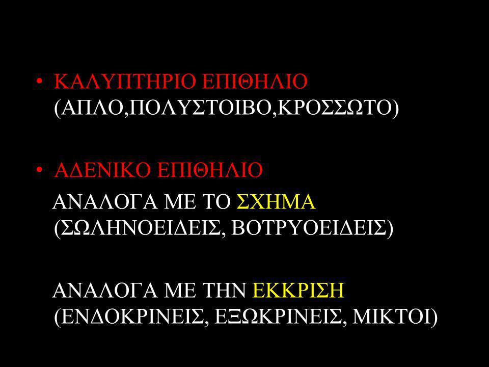 ΚΑΛΥΠΤΗΡΙΟ ΕΠΙΘΗΛΙΟ (ΑΠΛΟ,ΠΟΛΥΣΤΟΙΒΟ,ΚΡΟΣΣΩΤΟ) ΑΔΕΝΙΚΟ ΕΠΙΘΗΛΙΟ ΑΝΑΛΟΓΑ ΜΕ ΤΟ ΣΧΗΜΑ (ΣΩΛΗΝΟΕΙΔΕΙΣ, ΒΟΤΡΥΟΕΙΔΕΙΣ) ΑΝΑΛΟΓΑ ΜΕ ΤΗΝ ΕΚΚΡΙΣΗ (ΕΝΔΟΚΡΙΝΕΙΣ, ΕΞΩΚΡΙΝΕΙΣ, ΜΙΚΤΟΙ)