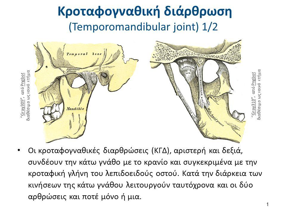 Κροταφογναθική διάρθρωση (Temporomandibular joint) 1/2 Οι κροταφογναθικές διαρθρώσεις (ΚΓΔ), αριστερή και δεξιά, συνδέουν την κάτω γνάθο με το κρανίο