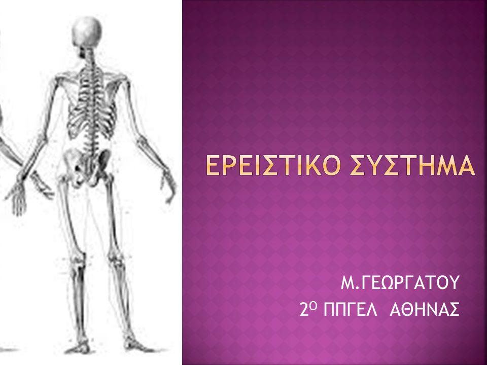 Μ.ΓΕΩΡΓΑΤΟΥ 2 Ο ΠΠΓΕΛ ΑΘΗΝΑΣ