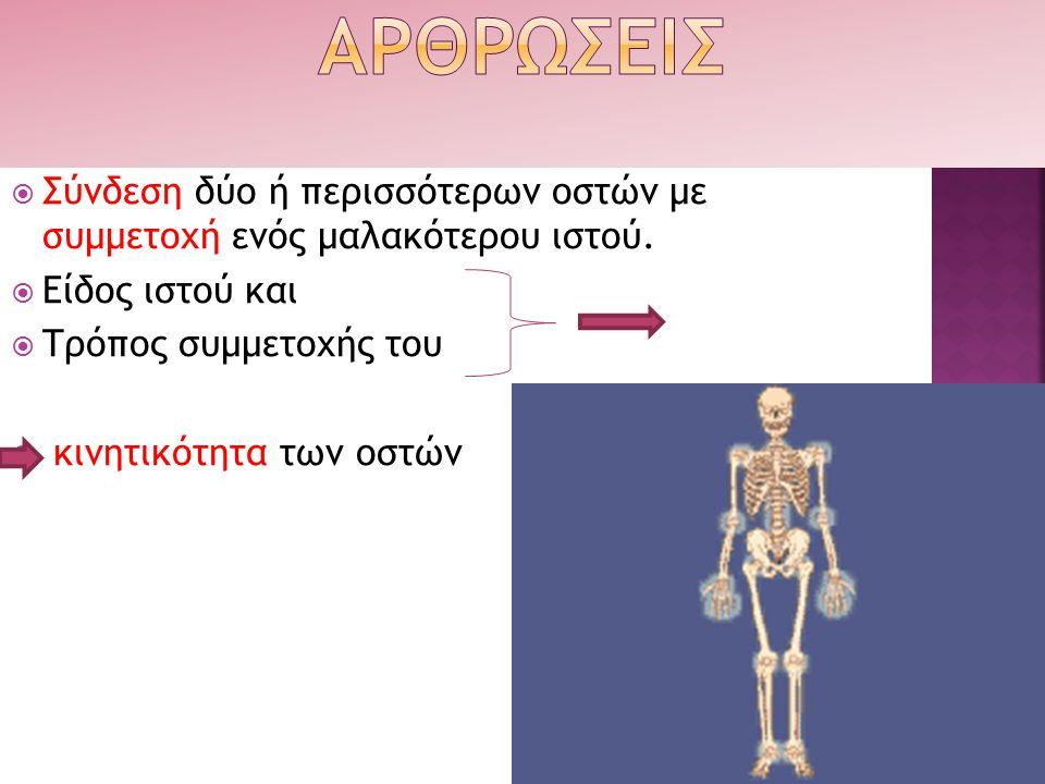  Σύνδεση δύο ή περισσότερων οστών με συμμετοχή ενός μαλακότερου ιστού.  Είδος ιστού και  Τρόπος συμμετοχής του  κινητικότητα των οστών