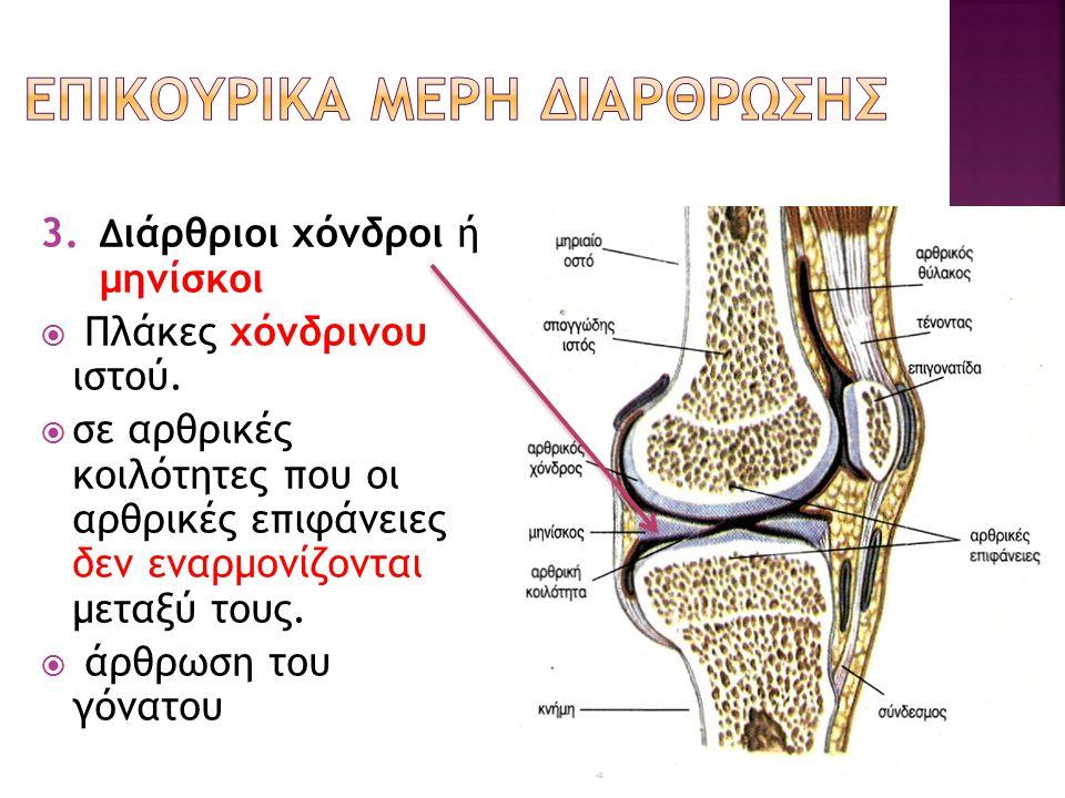 3. Δ ιάρθριοι χόνδροι ή μηνίσκοι  Πλάκες χόνδρινου ιστού.  σε αρθρικές κοιλότητες που οι αρθρικές επιφάνειες δεν εναρμονίζονται μεταξύ τους.  άρθρω