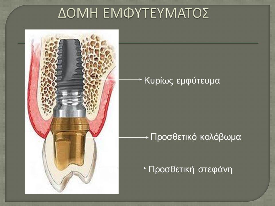 Κυρίως εμφύτευμα Προσθετικό κολόβωμα Προσθετική στεφάνη