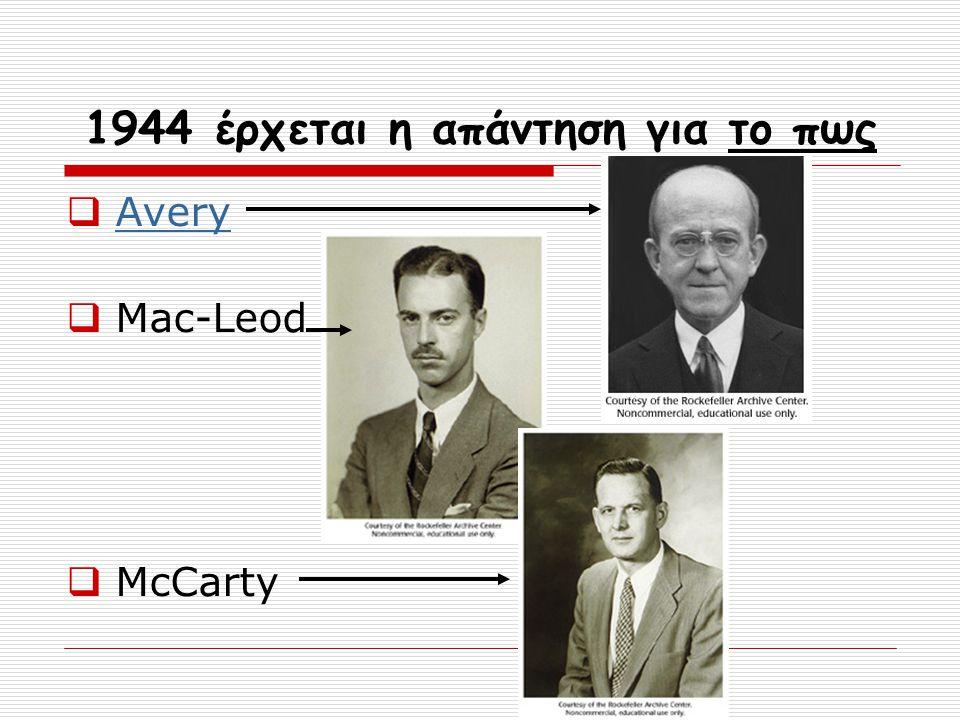 1944 έρχεται η απάντηση για το πως  Avery Avery  Mac-Leod  McCarty