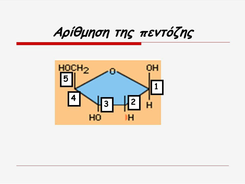 Αρίθμηση της πεντόζης 1 5 4 3 2