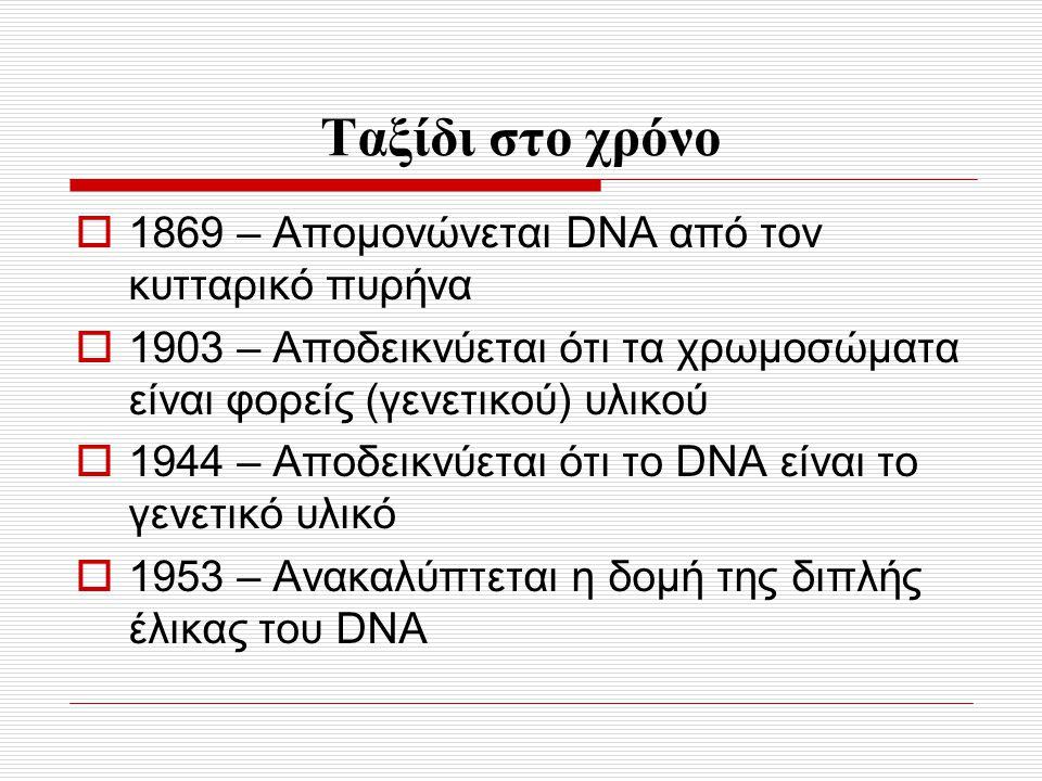 Ταξίδι στο χρόνο  1869 – Απομονώνεται DNA από τον κυτταρικό πυρήνα  1903 – Αποδεικνύεται ότι τα χρωμοσώματα είναι φορείς (γενετικού) υλικού  1944 –