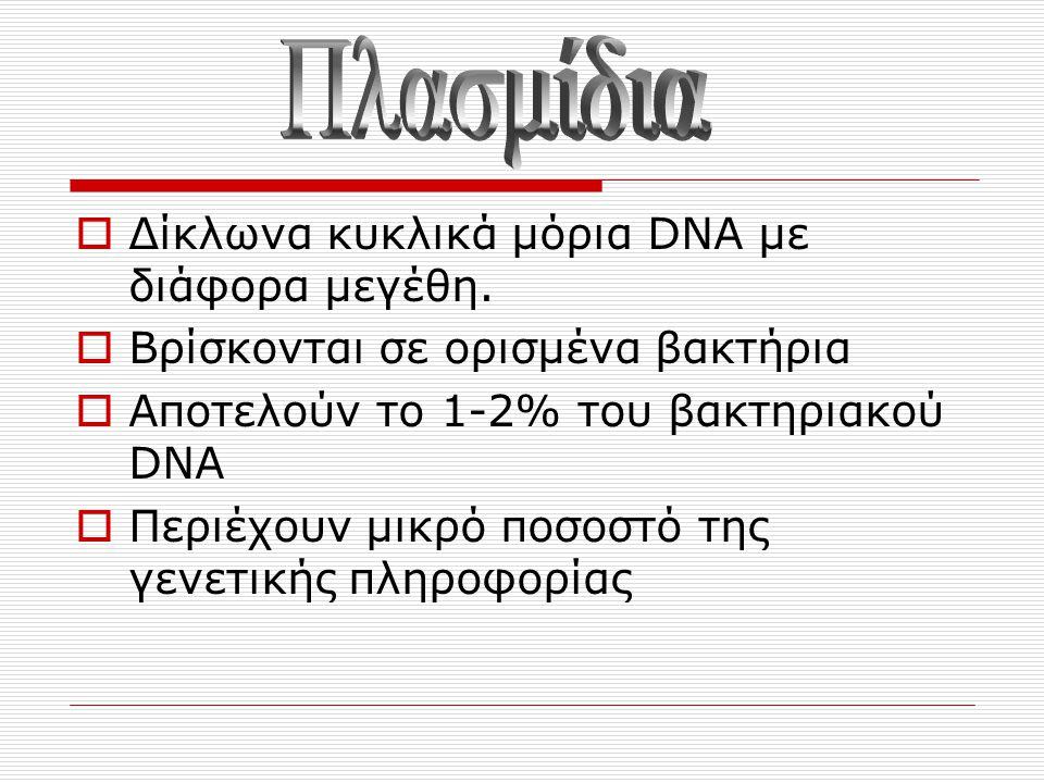  Δίκλωνα κυκλικά μόρια DNA με διάφορα μεγέθη.  Βρίσκονται σε ορισμένα βακτήρια  Αποτελούν το 1-2% του βακτηριακού DNA  Περιέχουν μικρό ποσοστό της