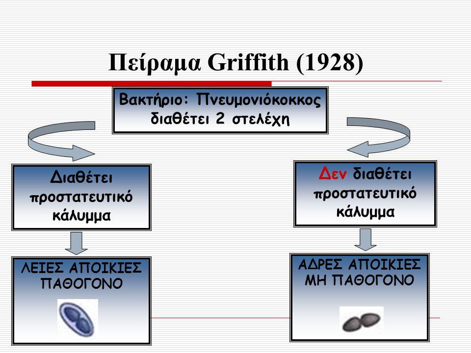 Πείραμα Griffith (1928) Βακτήριο: Πνευμονιόκοκκος διαθέτει 2 στελέχη Διαθέτει προστατευτικό κάλυμμα Δεν διαθέτει προστατευτικό κάλυμμα ΛΕΙΕΣ ΑΠΟΙΚΙΕΣ