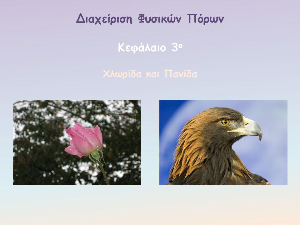 2. Η βόσκηση και κυρίως η υπερβόσκηση που γίνεται σε πολλές περιοχές της Ελλάδας.