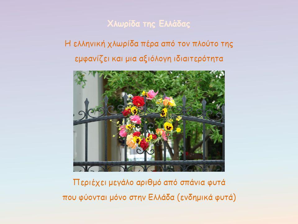 Η ελληνική χλωρίδα πέρα από τον πλούτο της εμφανίζει και μια αξιόλογη ιδιαιτερότητα Χλωρίδα της Ελλάδας Περιέχει μεγάλο αριθμό από σπάνια φυτά που φύο