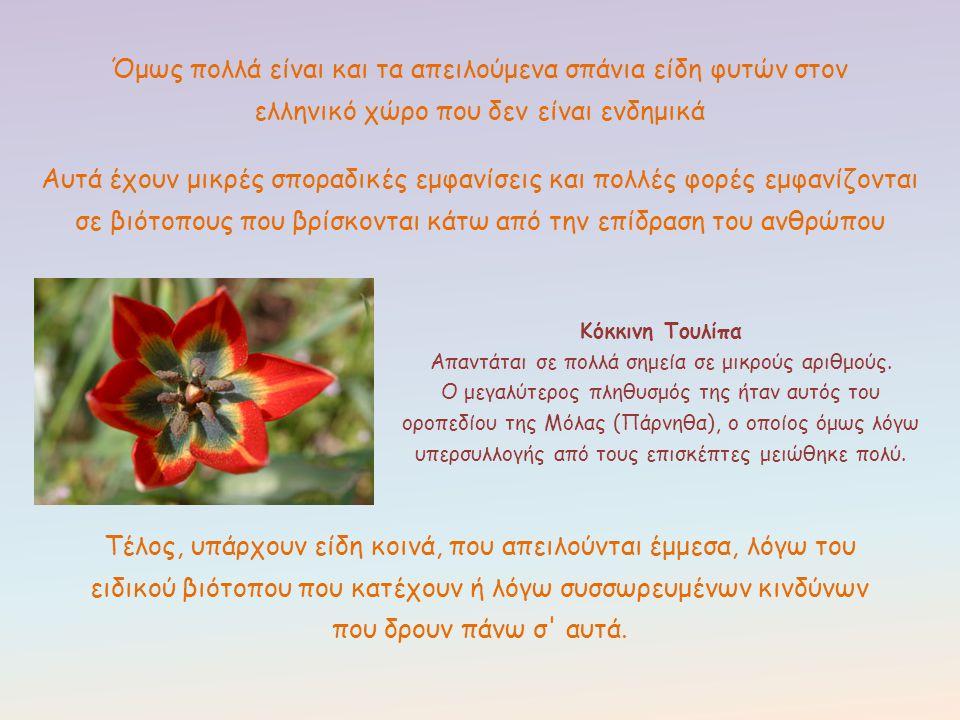 Όμως πολλά είναι και τα απειλούμενα σπάνια είδη φυτών στον ελληνικό χώρο που δεν είναι ενδημικά Τέλος, υπάρχουν είδη κοινά, που απειλούνται έμμεσα, λό